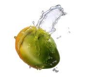 Выплеск воды при изолированное манго Стоковые Фотографии RF