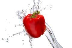 Выплеск воды при изолированный болгарский перец Стоковая Фотография RF