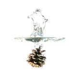 Выплеск конуса сосны на воде, изолированной на белой предпосылке Стоковая Фотография