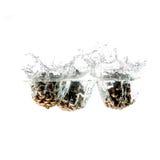 Выплеск конуса сосны на воде, изолированной на белой предпосылке Стоковые Изображения RF