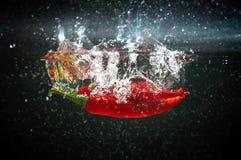 Выплеск красного перца Стоковые Фотографии RF