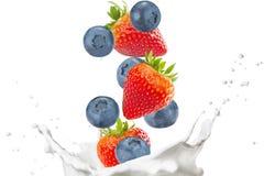 Выплеск клубники, голубики и молока Стоковые Изображения
