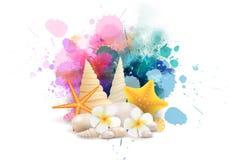 Выплеск с seashells и морскими звёздами Стоковое Изображение