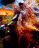 Выплеск цвета стоковая фотография