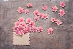 Выплеск цветков Стоковая Фотография