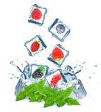 Выплеск ягоды Стоковые Изображения