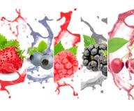 Выплеск ягоды стоковые фотографии rf