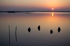 Выравнивать ландшафт с старой затопленной пристанью Стоковое Изображение RF