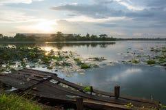 Выравнивать болото Стоковые Фотографии RF
