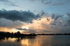 Выравнивать болото Стоковое Фото