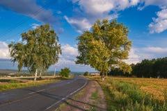 Выравнивать ландшафт вне города на заходе солнца Стоковая Фотография RF