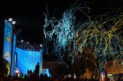 Выравнивать под открытым небом концерт Стоковые Изображения
