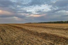 Выравнивать сжатое поле Стоковая Фотография RF