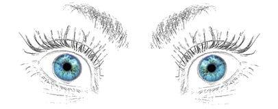Выражение лица голубых глазов Стоковое фото RF