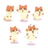 Выражения кота Стоковые Фото
