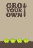 Вырастите ваше собственное poster_Lettuce Стоковое Изображение RF