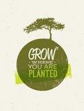 Вырастите где вы засаженная цитата мотивировки на рециркулированной бумажной предпосылке бесплатная иллюстрация