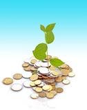 вырастите деньги стоковое фото rf
