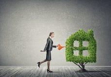 вырастите заработайте деньги вашей стоковые изображения rf