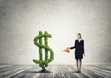 вырастите заработайте деньги вашей стоковое фото rf