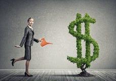 вырастите заработайте деньги вашей стоковое изображение