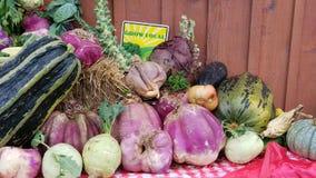 Вырастите местные овощи стоковые изображения rf