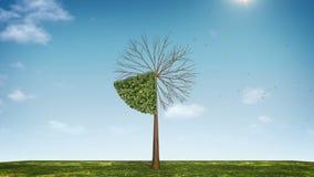 Вырастите долевая диограмма формы дерева показанный 20 процентов зеленая икона иллюстрация вектора