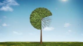 Вырастите долевая диограмма формы дерева показанный 70 процентов зеленая икона иллюстрация вектора