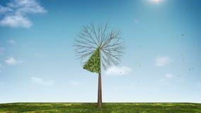 Вырастите долевая диограмма формы дерева показанный 10 процентов зеленая икона иллюстрация вектора