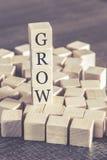 Вырастите сообщение сформированное с деревянными блоками стоковое фото rf