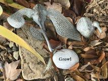 Вырастите! стоковое изображение rf