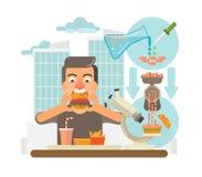 Выращиванная в питательной среде: концепция мяса Бесплатная Иллюстрация
