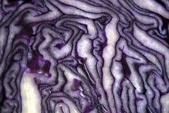 Вырежьте сердцевина из и картины внутренности красной капусты Стоковое Фото