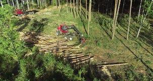 Вырезывание леса, жатка тимберса, вырезывание леса с особенным оборудованием акции видеоматериалы