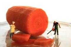 вырезывание моркови вручает отрезанный нож Стоковые Фото
