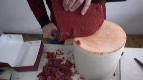 Вырезывание мяса, бекон сток-видео
