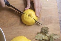 Вырезывание персоны и обрабатывать сохраненные посоленные лимоны Стоковое Изображение RF