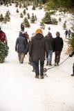 Вырезывание рождественской елки стоковые фото
