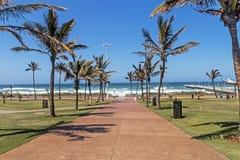 Выровнянная пальмой рубрика дорожки к голубому прибрежному горизонту Стоковые Изображения RF