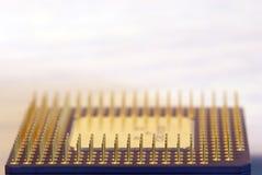 выровнянные штыри микропроцессора Стоковая Фотография RF
