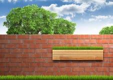 Выросли дерево с кирпичной стеной на зеленой свежей траве стоковое фото rf