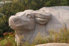Высекаенное животное в утесах на Laoshan около Qingdao стоковое фото