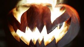 высеканная тыква halloween looped сток-видео