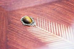 высеканный пуком сбор винограда виноградин украшения деревянный Стоковая Фотография RF