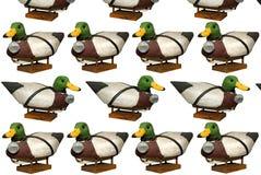 высеканный селезен decoy ducks mallard Стоковые Фотографии RF