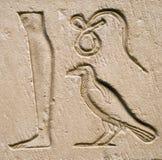 высеканный символ Стоковые Изображения
