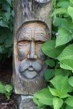высекать древесину Стоковое Изображение