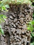 высекать древесину Стоковые Изображения