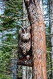 Высекать дерева Стоковая Фотография