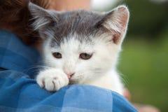 Выскальзывание котенка на плече мальчика outdoors Стоковое Фото